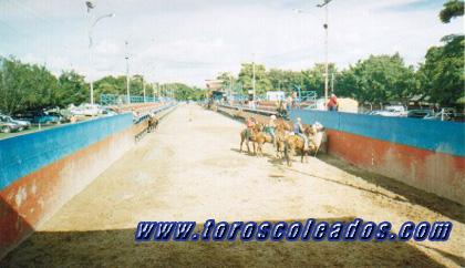Los toros coleados vistos desde aragua 20 ago noticias for Puerta 6 autodromo hermanos rodriguez ubicacion